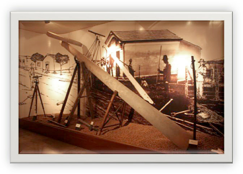 Ações e visitas programadas para comemorar a data no Museu