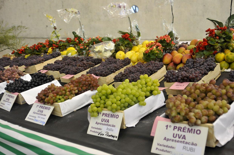 A exposição de frutas foi um dos destaques da festa