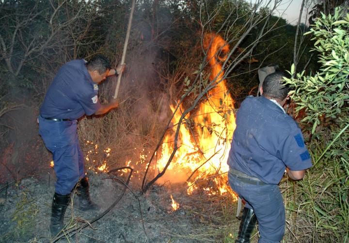 Trabalho de preservação da Serra envolve combate a incêndio