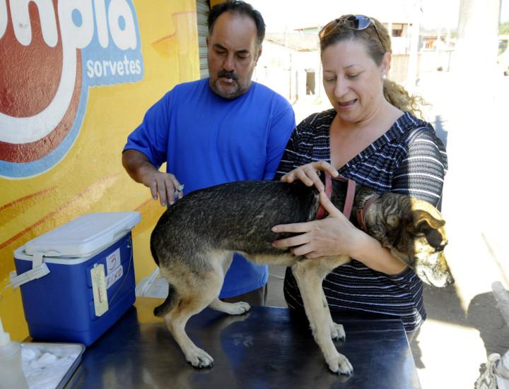 Vacinação no Corrupira protege os animais
