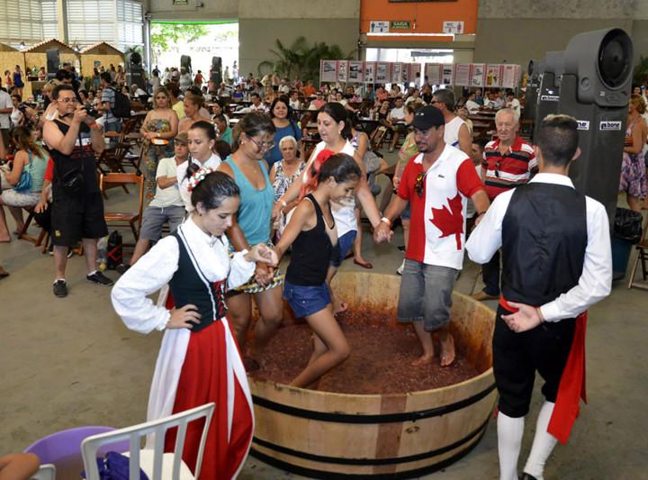 Tradicional pisa da uva também marcará o evento