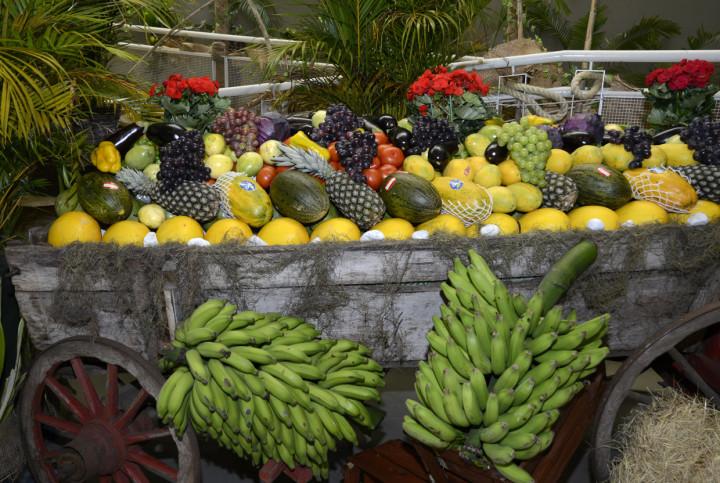 As frutas e legumes usados no ambiente da festa alimentam beneficiados de entidades