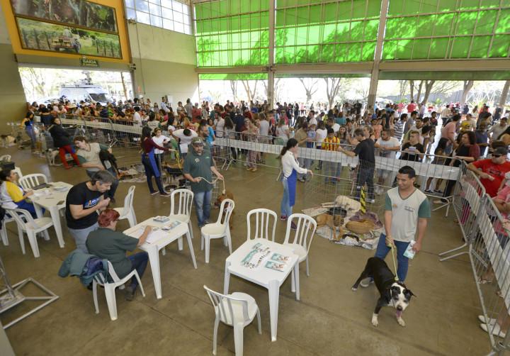 Feira de adoção promovida pela Cobema foi um dos destaques do evento