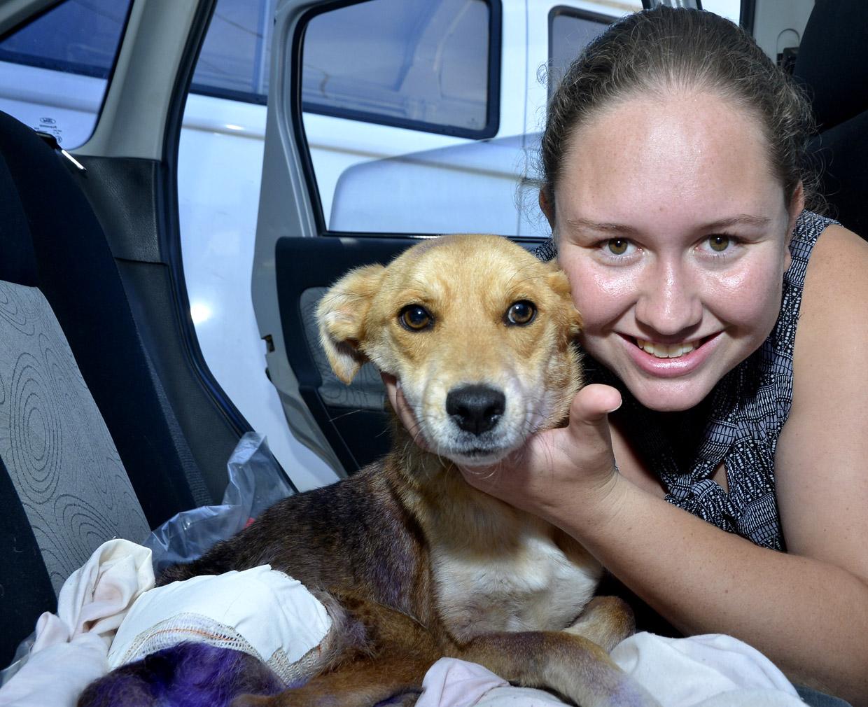 Para Talissa, apoio é essencial mas pessoas não devem abandonar animais