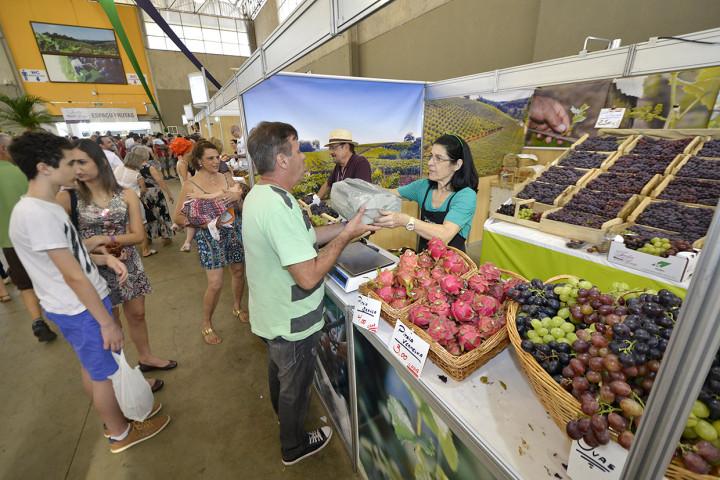 Com vendas aquecidas, frutas estão entre as estrelas da festa