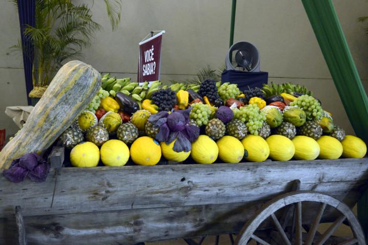 Alimentos decorativos foram doados para entidades