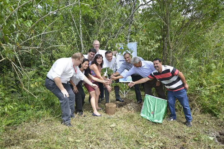 Em ato simbólico, autoridades e produtores plantam uma árvore