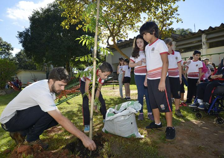 Projeto já contou com o plantio de mais de 800 árvores