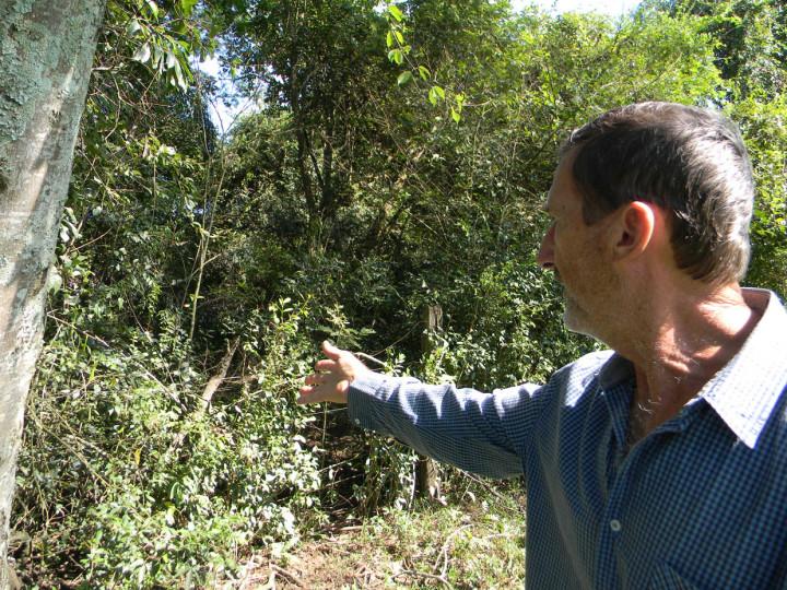 Agricultor mostra mata ciliar: geração de água é extinta na urbanização e desmatamento
