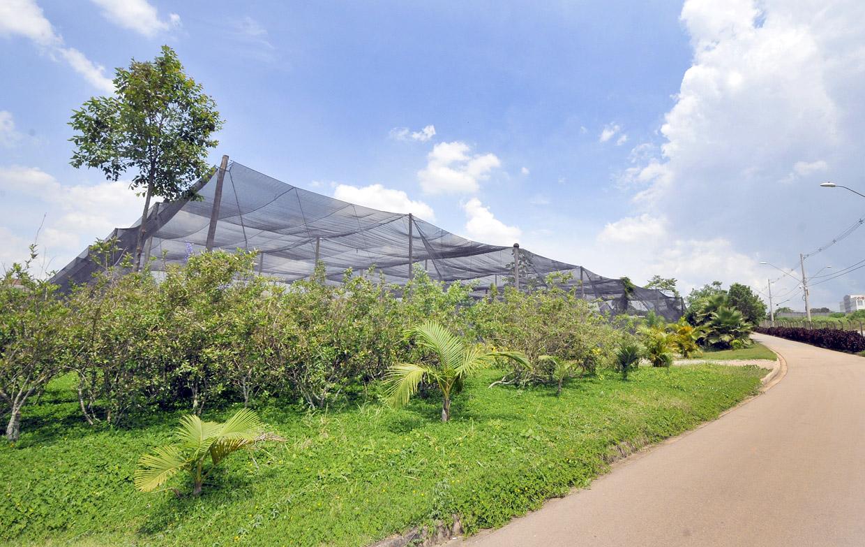A oficina oferece educação ambiental e integração entre os servidores