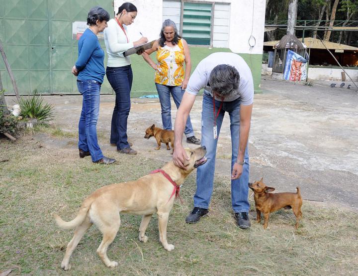 Trabalho visa reduzir riscos da interação de pets com fauna nativa