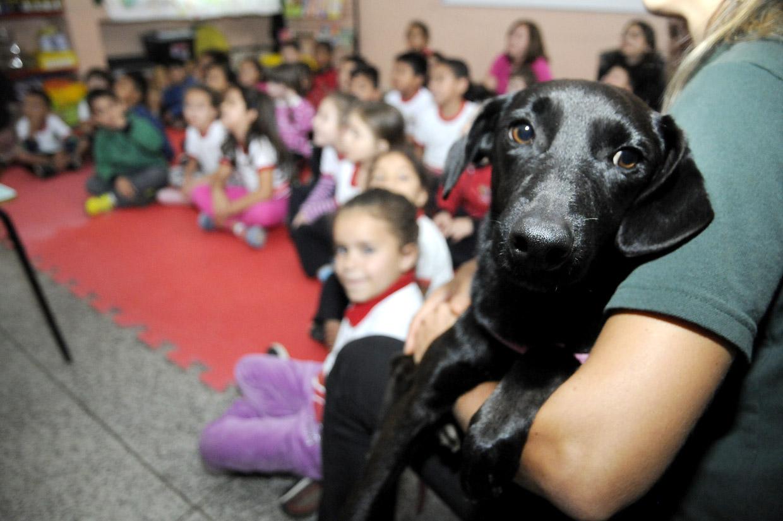 Mascote do projeto, o cão Sorriso é uma atração à parte