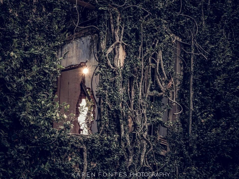 Imagens retratam lugares abandonados com reforço da beleza estética pelo olhar da artista Karen