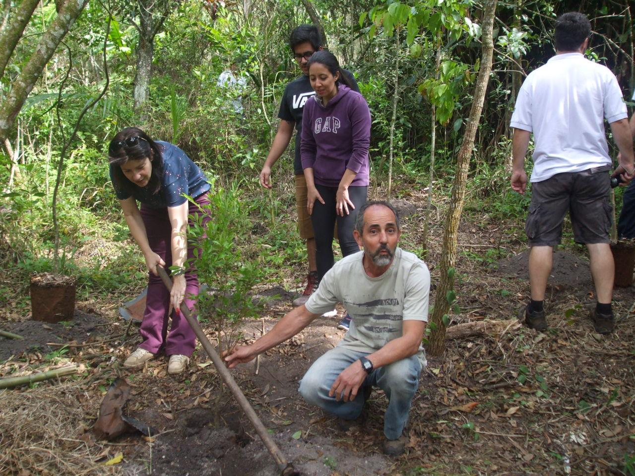 Monitores e secretária plantam uma das árvores frutíferas nativas