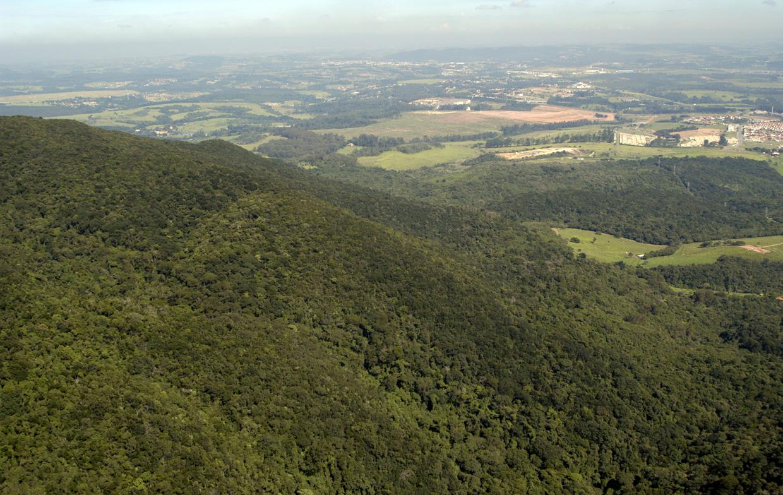 Reserva Biológica da Serra do Japi: fonte de conhecimentos