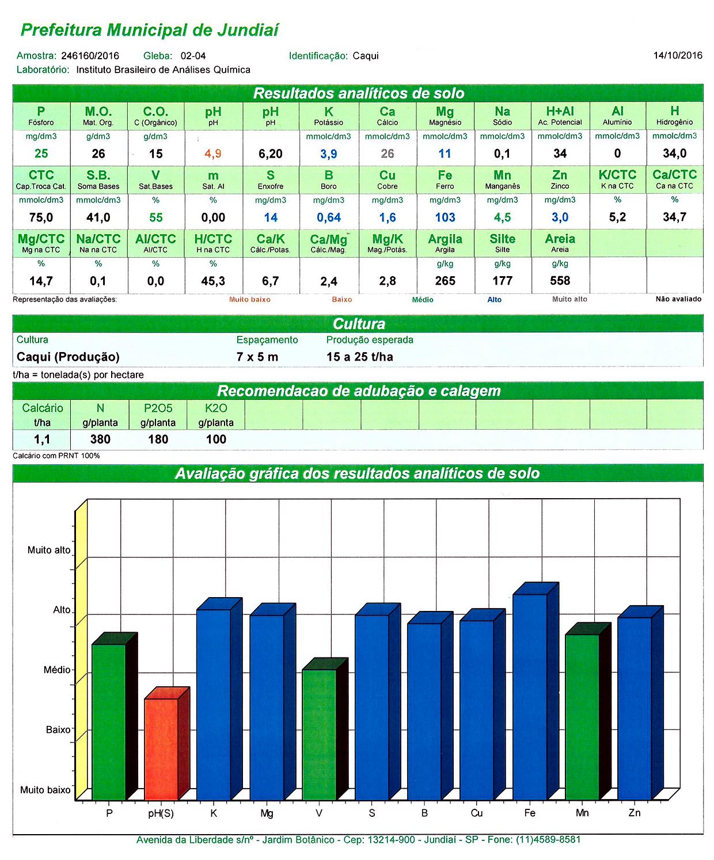 Exemplo de relatório de solo: base para orientações de calagem, adubagem orgânica e adubagem mineral de produção