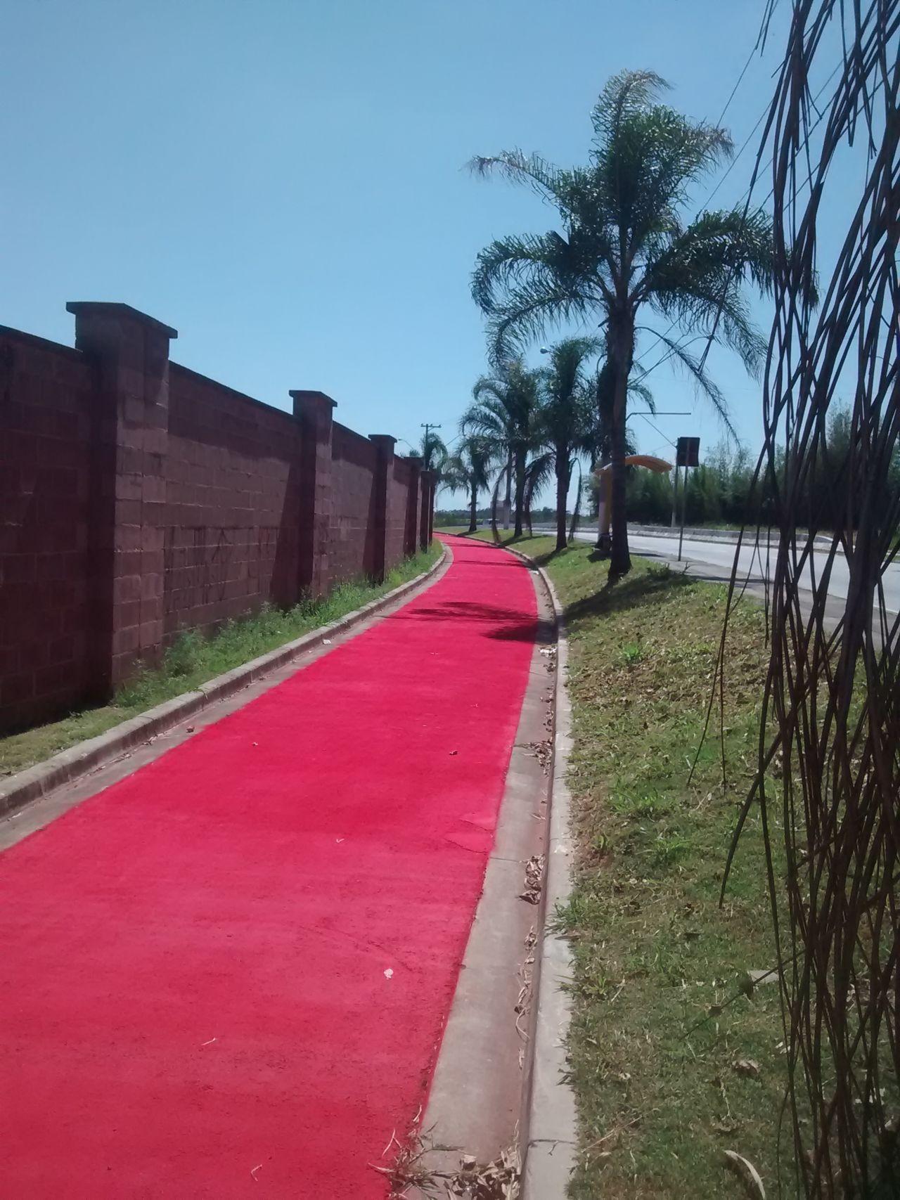 Trecho inicial da revitalização da ciclovia da avenida Antonio Pincinato