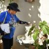 Agente fiscaliza planta em casa