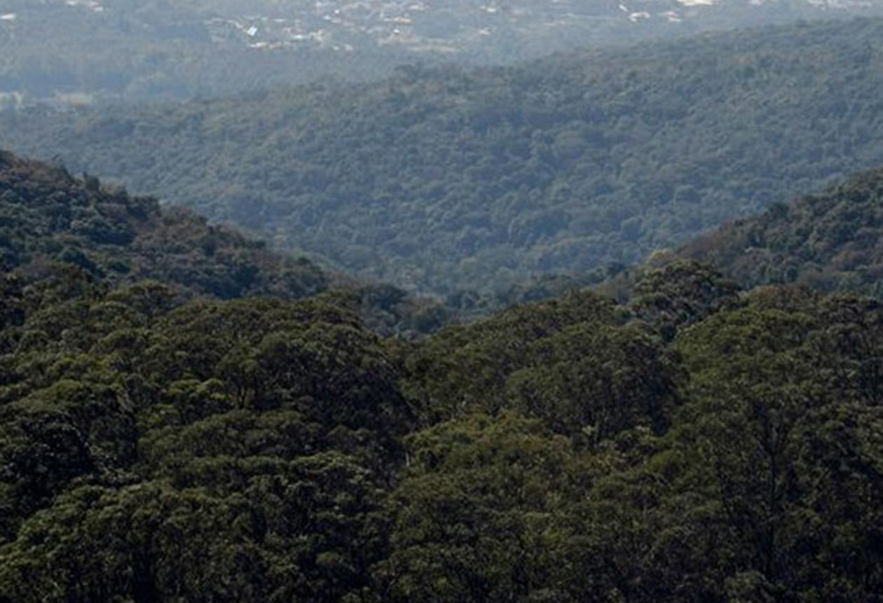 Serra do Japi vista de cima