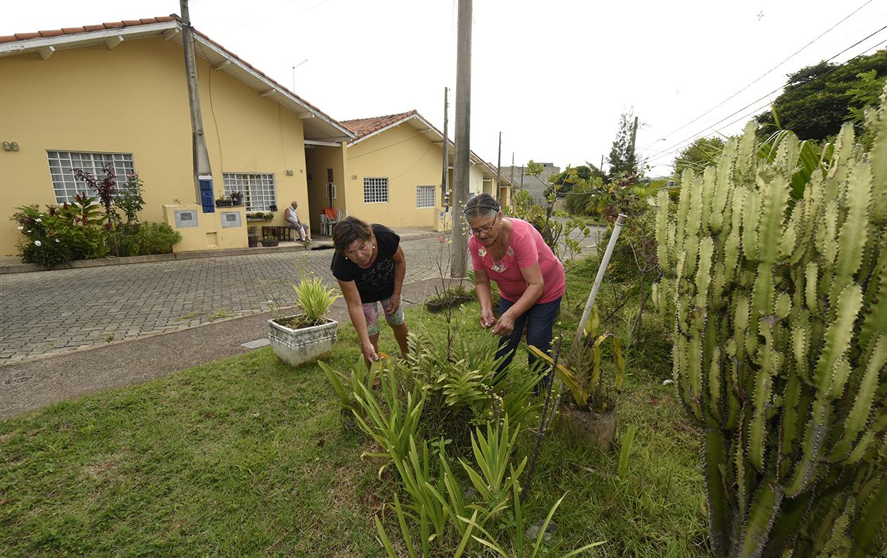 Duas idosas trabalhando em um jardim