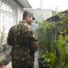 Militar observa vasos e plantas em residência
