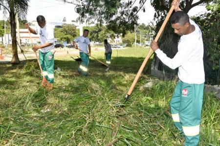 Homens recolhem mato cortado