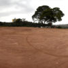 Foto de terreno com terra e árvore ao fundo