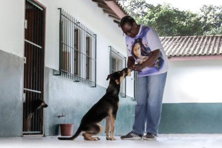 Mulher alimenta cachorro