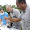 Três técnicos fazem procedimento em rede com morcego