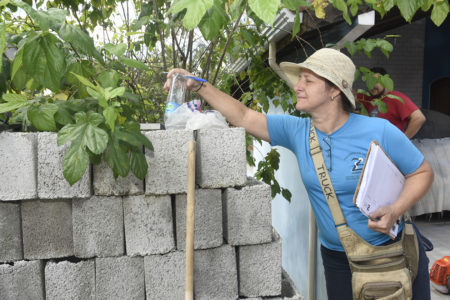 Vistorias contra arboviroses em blocos de concreto