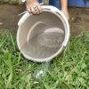 Foto de balde com água sendo despejada em grama