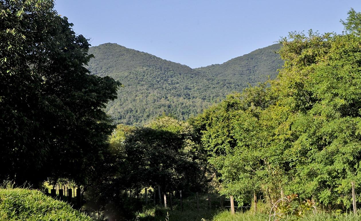 Foto da Serra do Japi