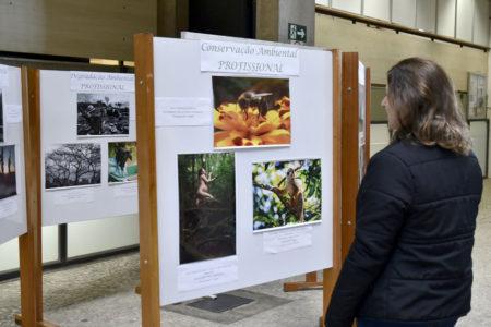 Mulher olha para painel de exposições com três fotos