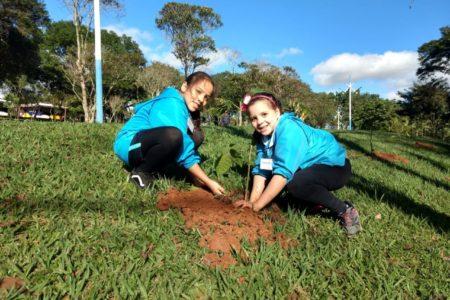 Crianças plantam árvores no Parque da Cidade