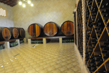 Garrafas de vinho em adega vertical e tonéis ao fundo