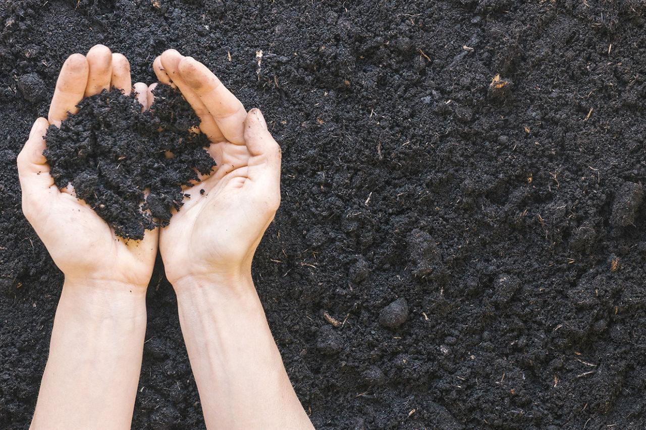 Imagem mostra as mãos de uma pessoa segurando um punhado de terra escura, abaixo, mais terra no chão.