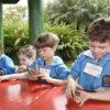 Crianças sentadas, manuseando plantas