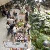 Foto de praça com barracas montadas e jardim com plantas
