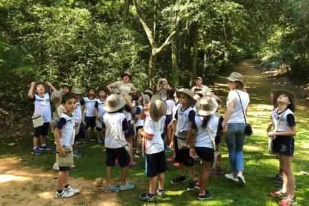 Crianças e professores interagem em contato com a natureza