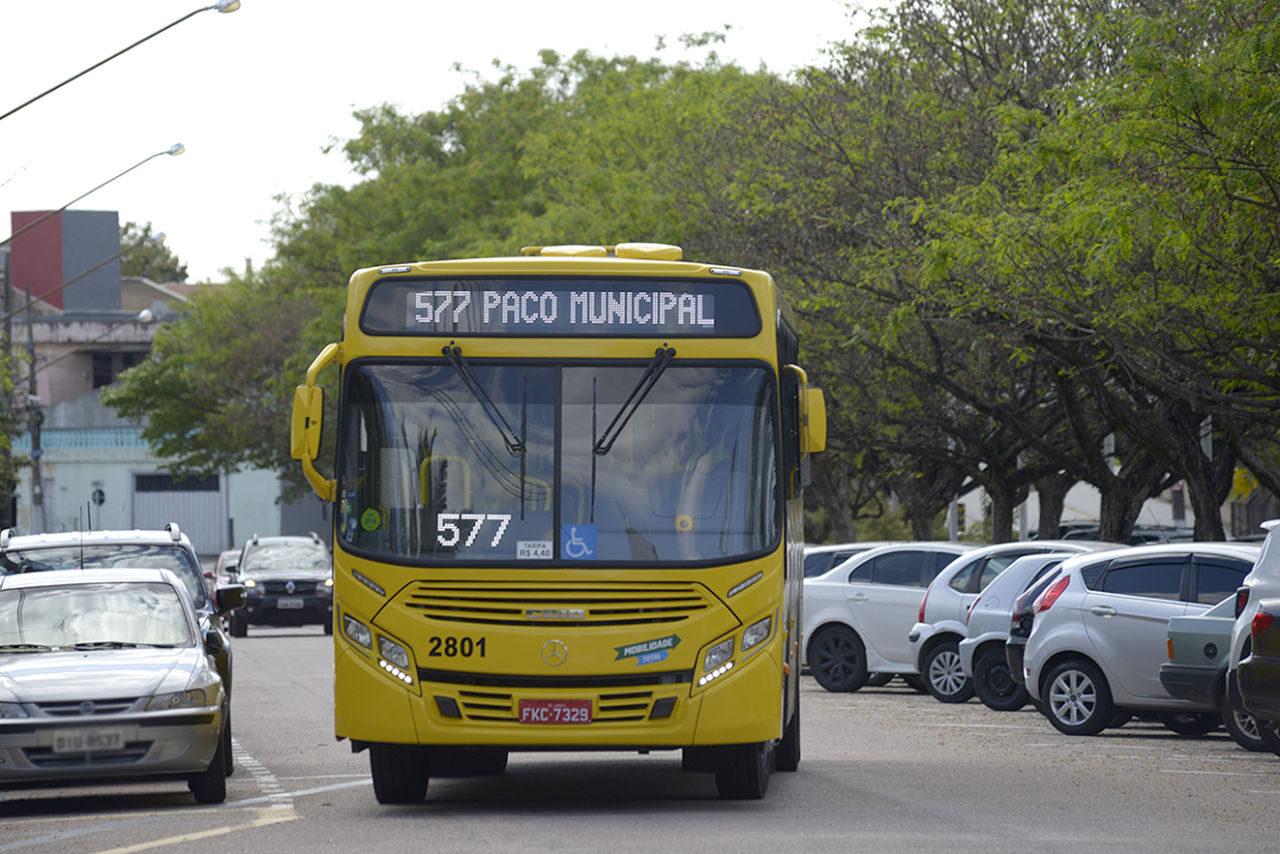 ônibus circulando em via, com carros estacionados de ambos os lados e árvores