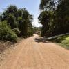 """Áreas rurais receberão herbicidas convencionais, enquanto as urbanas terão o """"herbicida natural"""""""
