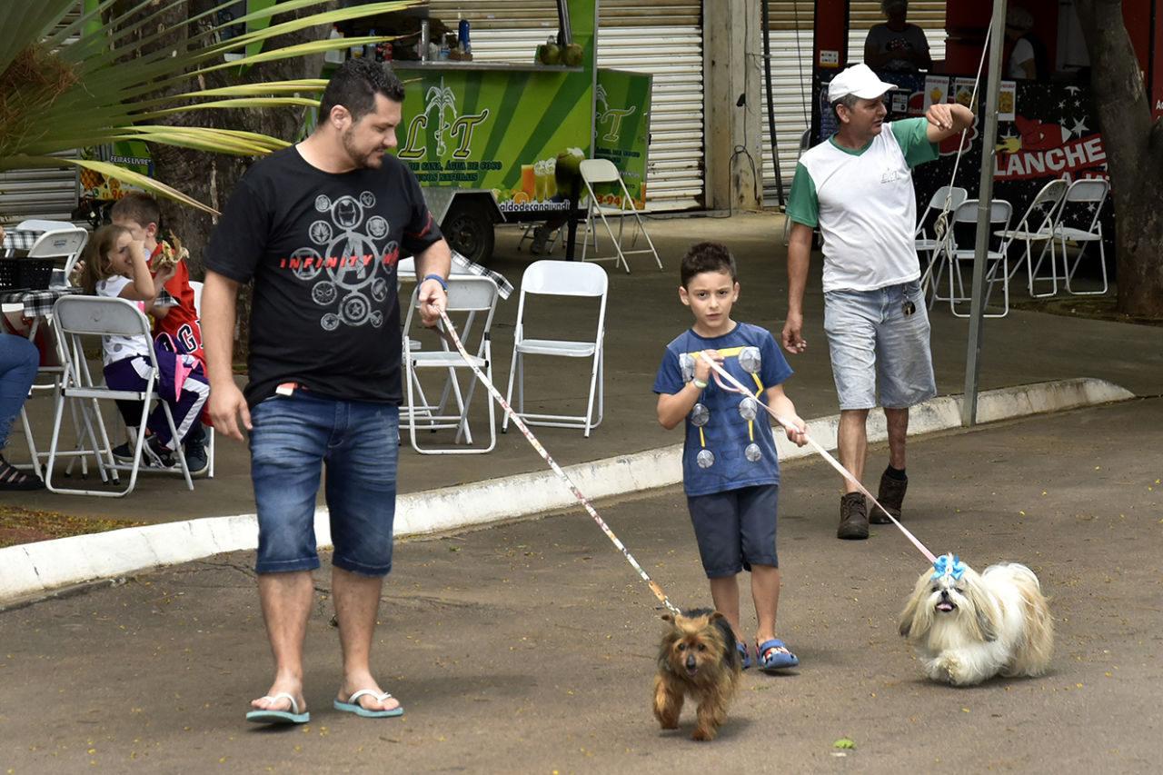 Homem e menino caminham, levando cachorros pequenos por coleiras
