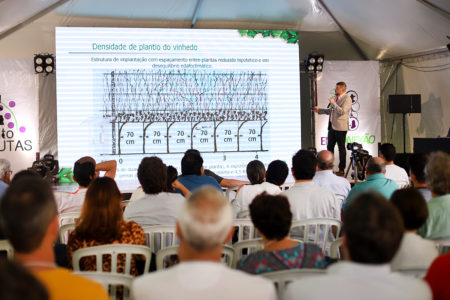 Uma das palestras do evento abordou a densidade de plantio do vinhedo