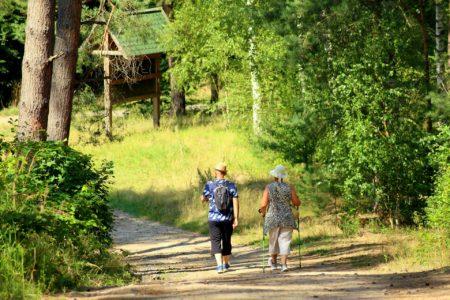 Duas pessoas de costas, caminhando em meio a uma trilha no campo
