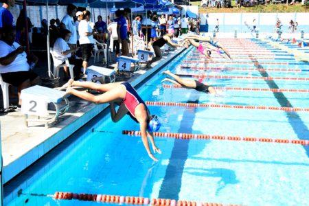 Piscina de competições, com crianças mergulhando e outros atletas na beira da água