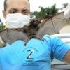 Veterinário olhando morcego