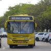 ônibus transitando por via com carros estacionados em ambos os lados, com árvores na calçada