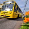 No dia 31 de dezembro, as linhas de ônibus municipais circularão com tabelas horárias referente aos sábados