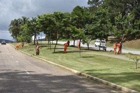 Mutirão de roçada de mato e poda de árvores ocorre neste sábado e domingo pelo terceiro final de semana seguido