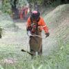 Serviços como a roçagem do mato estão mantidos em Jundiaí